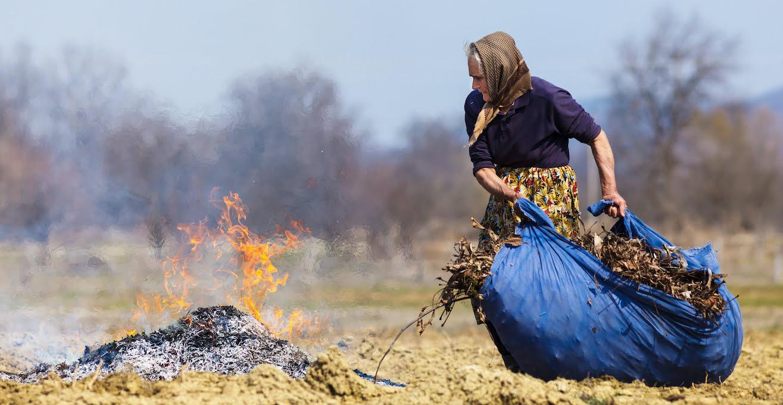 спалювання листя каратиметься штрафом до 60 тисяч гривень або обмеженням волі на строк до трьох років
